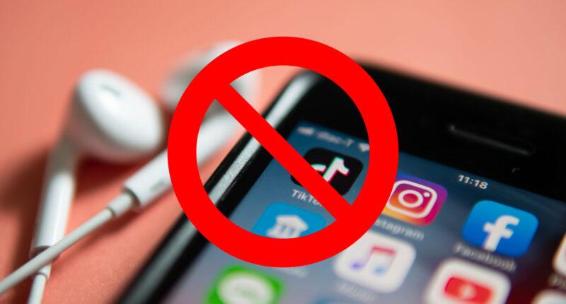 Indien verbietet chinesische Apps