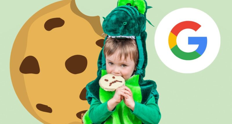 google führt floc als cookie alternative ein